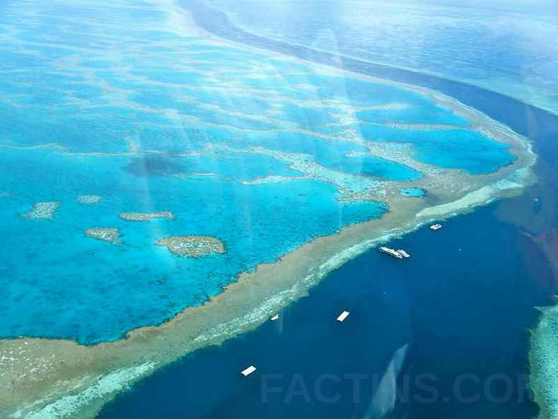 Amazing Great Barrier Reef view from Helicopter