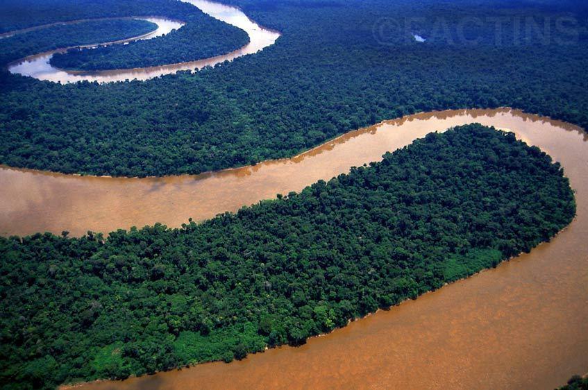 Amazing Amazon River