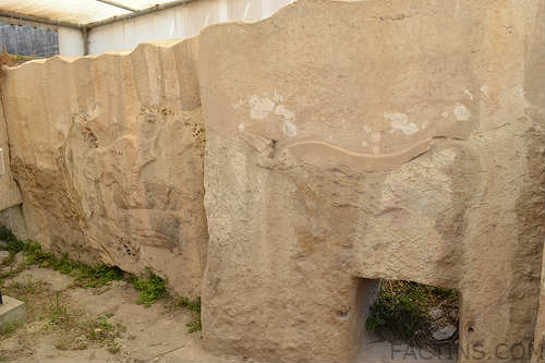 Bulls and Sow Carvings - Tarxien Temple