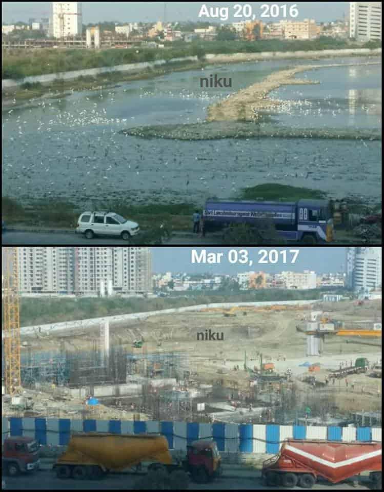 Pallikaranai Marshland Damage - Importance of pallikaranai marshland ecosystem - Factins