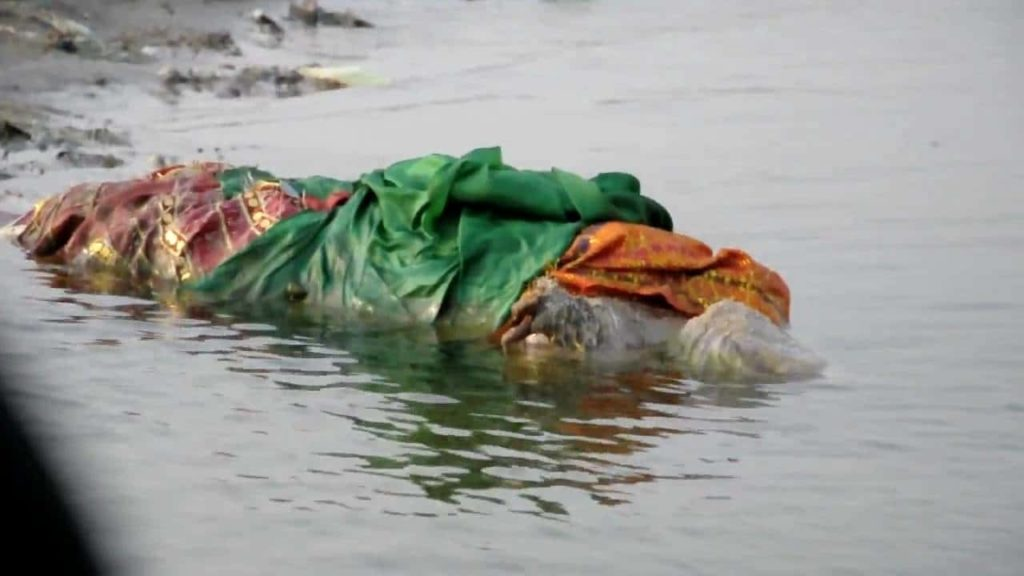 Dead Bodies Floating In The Ganges River