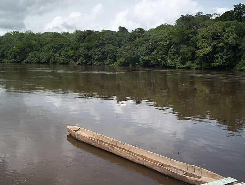 dja river - dja faunal reserve - factins