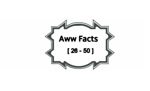 25 Interesting Aww Facts [26 -50]