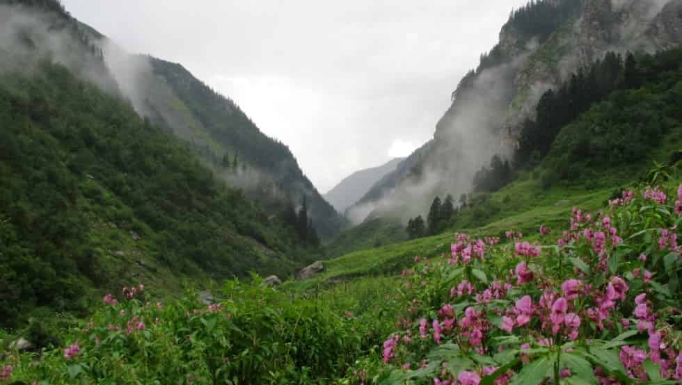 Great Himalayan National Park - UNESCO Heritage Place in India - Factins