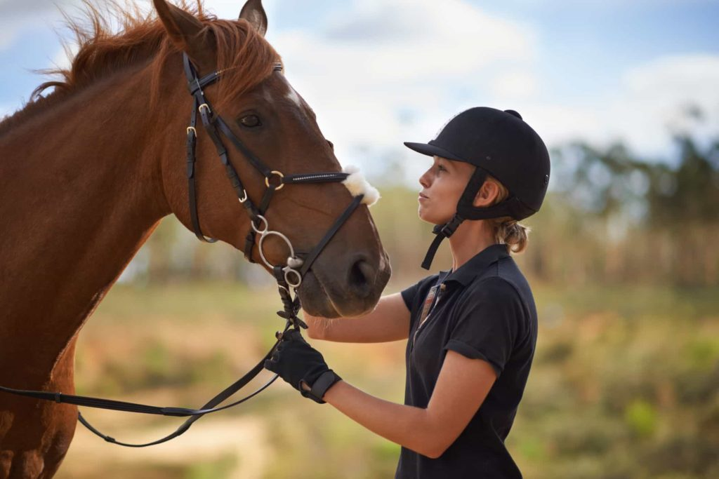 Horse Love - Horse Facts - Factins