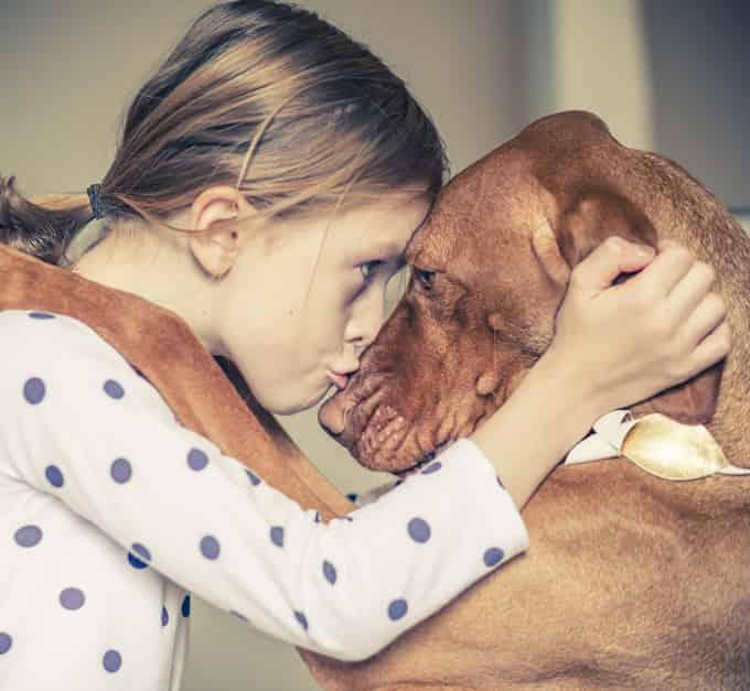Dogs Love - Factins